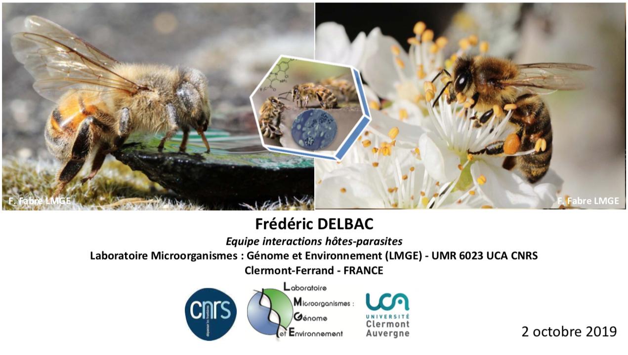 Soirée mensuelle d'octobre : Impact de Nosema ceranae sur la santé des abeilles
