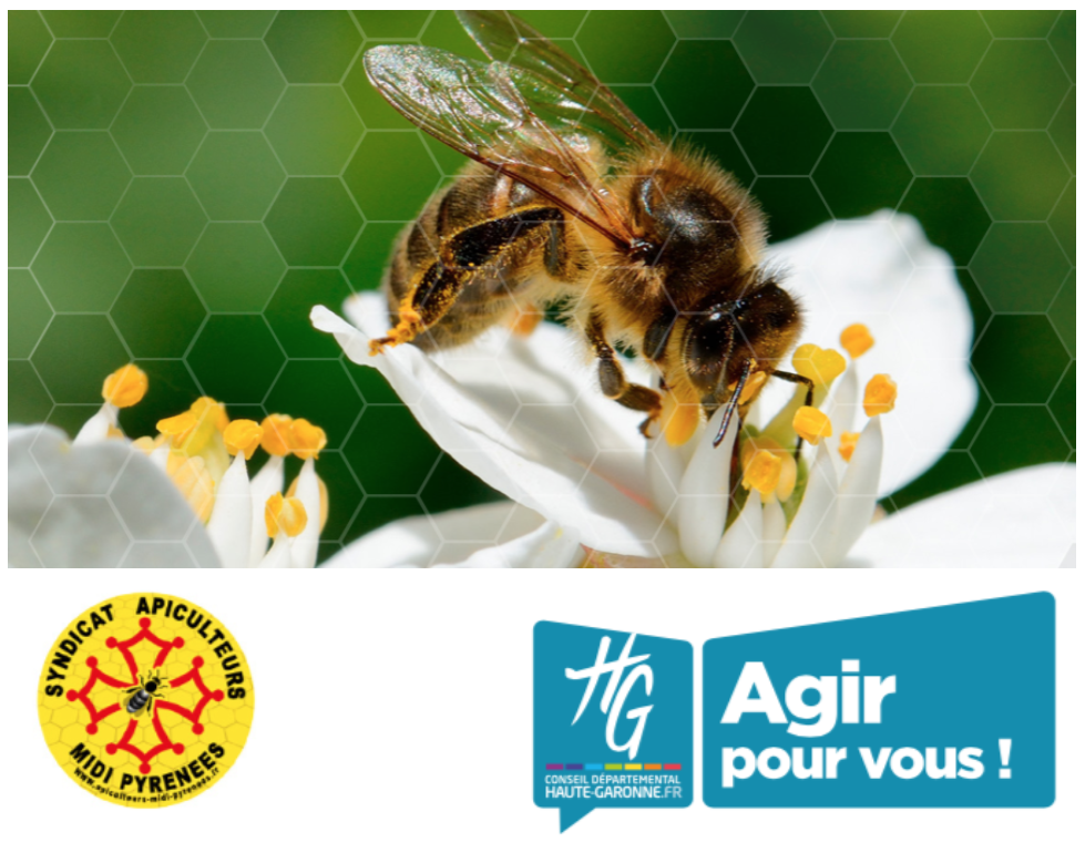 Soirée mensuelle avec Jean-Claude Ameisen «Abeilles, merveilleuses abeilles»