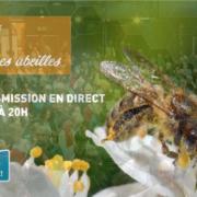 Revoir la conférence de Jean-Claude Ameisen » Abeilles, merveilleuses abeilles»